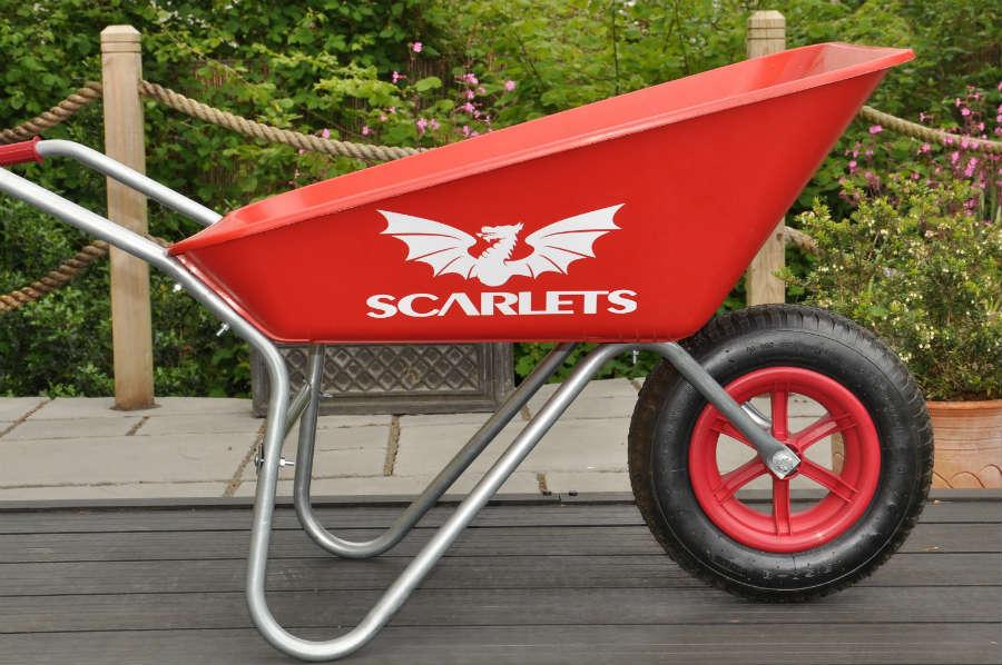 SCARLETS-NEW